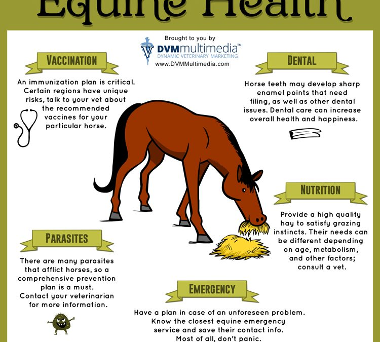 Equine Health Information